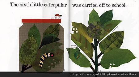 TEN LITTLE CATERPILLARS-IN