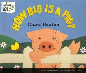 How Big Is a Pig