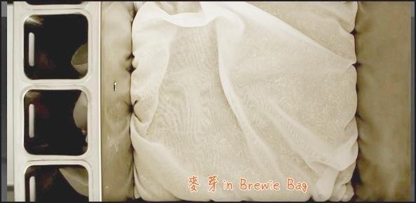Brewie BIAB.JPG