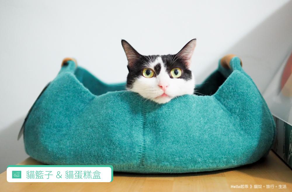 貓籃子首圖.jpg