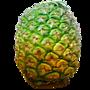 天然鳳梨酵素釀造