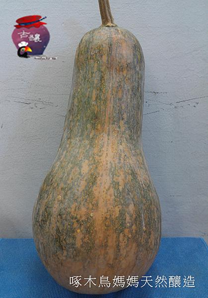 天然釀製>南瓜