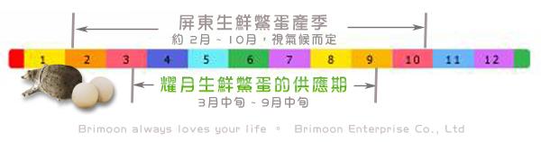 鱉蛋生產期time line-20120925