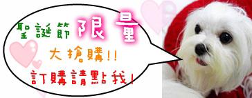 2010Xmas慶祝活動_104.JPG