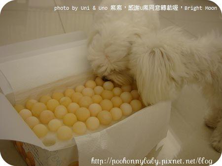 Uni麻麻水煮鱉蛋_07.jpg