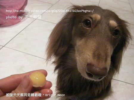 天天麻麻的鱉蛋開箱_12.jpg