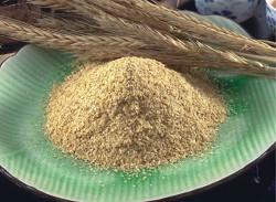 小麥胚芽粉.jpg