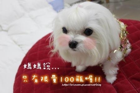2010Xmas慶祝活動_59.jpg