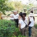 [ 童軍旅行 ] 自然體驗 -- 介紹校園植物(二)