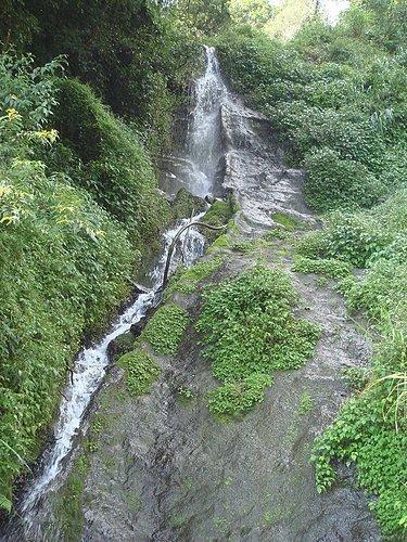涓涓流水 為植物帶來所需的水分.jpg