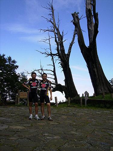 蔡先生與鍾先生兄弟攝於夫妻樹.jpg