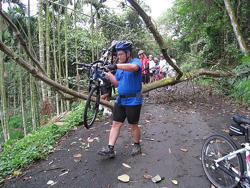 騎乘實況報導 7 樹倒了 檯車通過.jpg