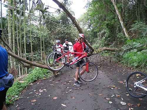 騎乘實況報導 8 樹倒了 檯車通過.jpg