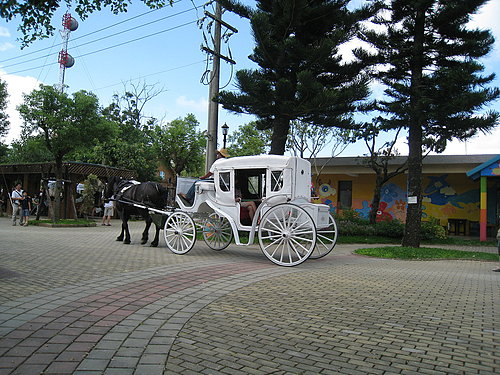 牧場中一景---可乘坐馬車繞牧場一圈.jpg