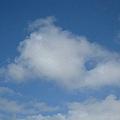 白雲感覺就好像捲棉花糖一般 細細的卻又不會雜亂.jpg