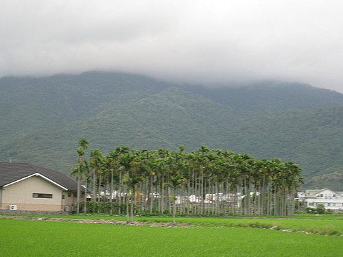關山自行車道一景5.jpg