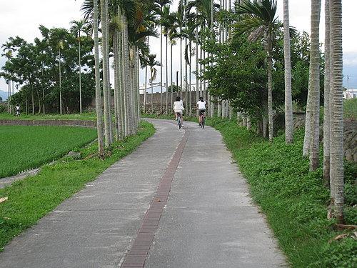 關山自行車道一景9 --- 慢騎於林間 優雅的享受運動.jpg