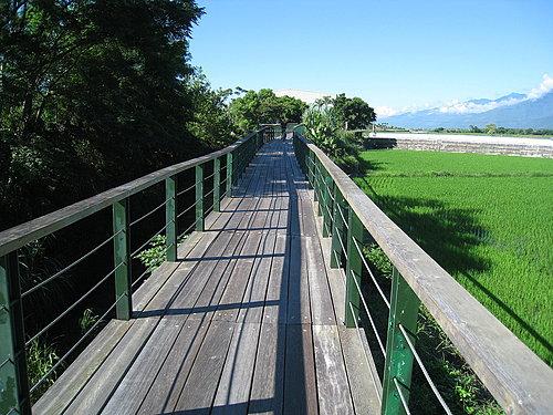 池上鄉大波池自行車道25.jpg