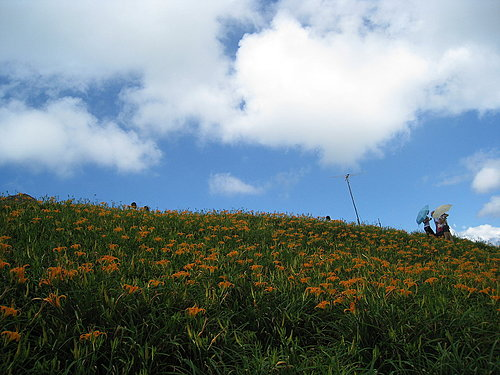 富里鄉六十石山紀錄23.jpg