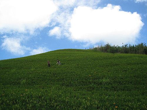 富里鄉六十石山紀錄25.jpg