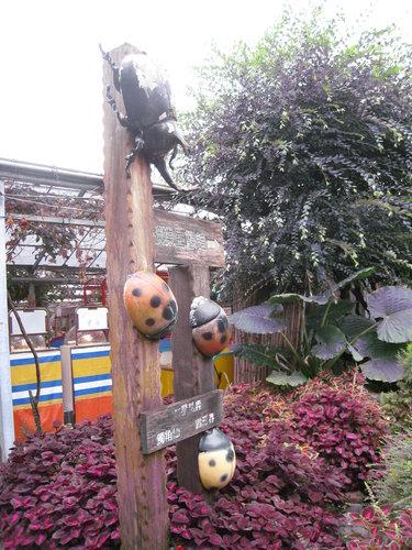 台一生態教育休閒農場14.jpg