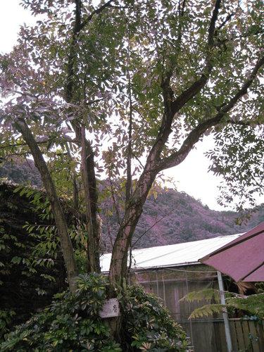 台一生態教育休閒農場24.jpg