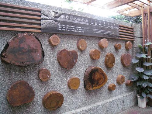 林田山林業文化園區6.jpg
