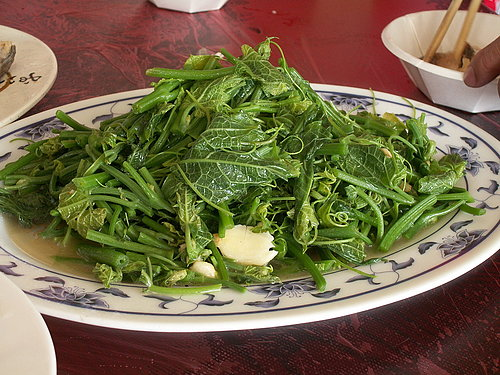 美味的中餐 --- 龍鬚菜.jpg