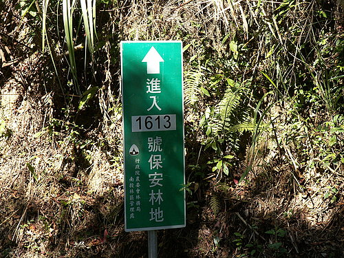 這裡就是本次路線的最高點 標高868公尺.jpg