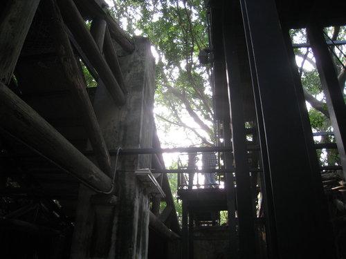 安平樹屋3.jpg
