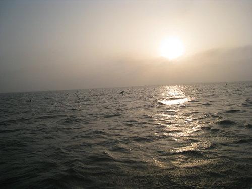 七股瀉湖2.jpg