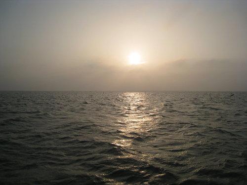 七股瀉湖3.jpg