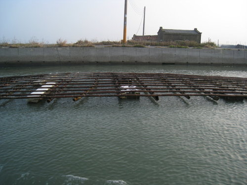 七股瀉湖5.jpg