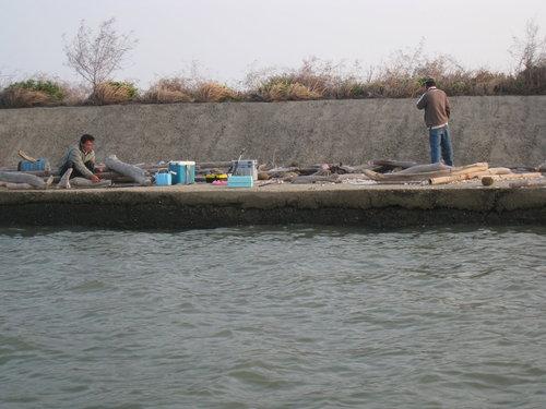 七股瀉湖7.jpg