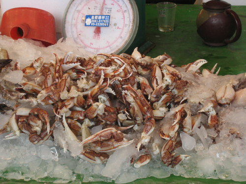 嘉義布袋魚市11.jpg