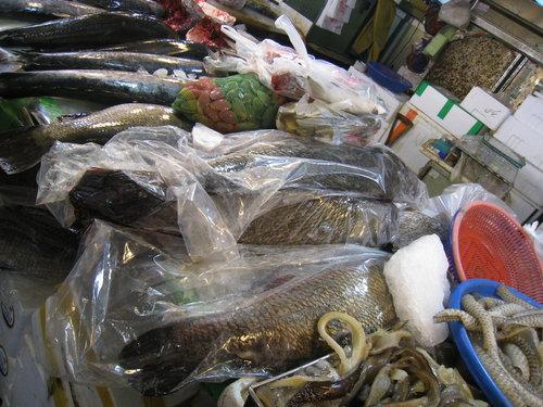 嘉義布袋魚市23.jpg