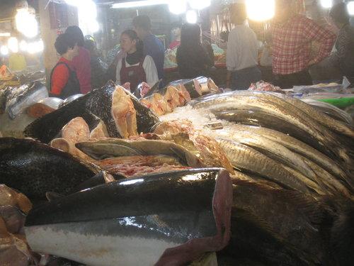 嘉義布袋魚市31.jpg