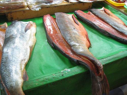 嘉義布袋魚市35.jpg