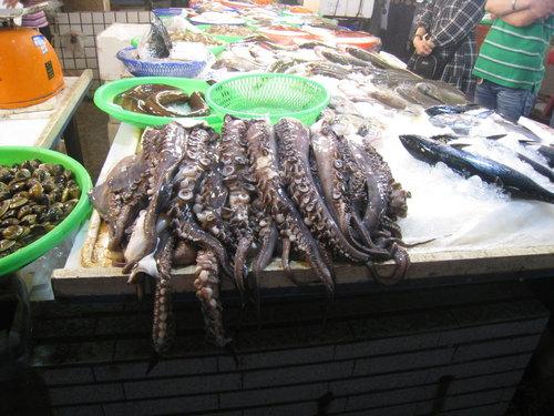嘉義布袋魚市52.jpg
