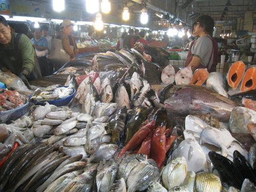 嘉義布袋魚市57.jpg