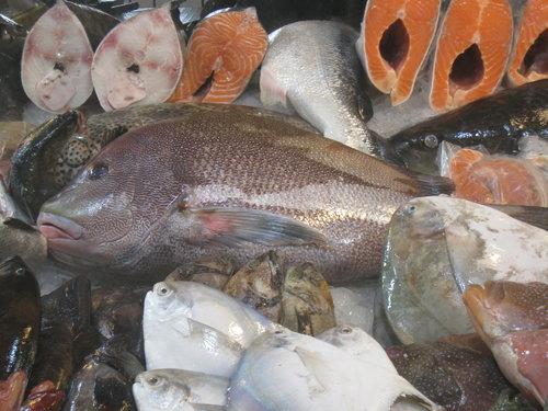 嘉義布袋魚市58.jpg