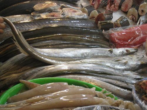嘉義布袋魚市59.jpg