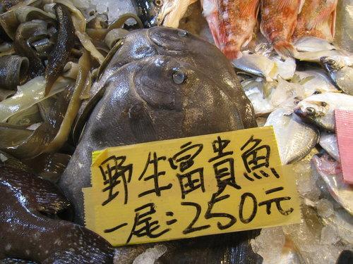 嘉義布袋魚市63.jpg
