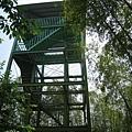 竹山天梯5.jpg