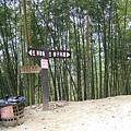 竹山天梯11.jpg