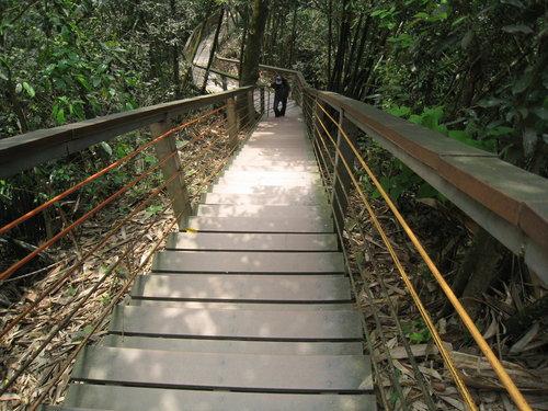 竹山天梯12.jpg