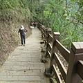 竹山天梯17.jpg