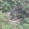 竹山天梯23.jpg