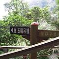 竹山天梯29.jpg
