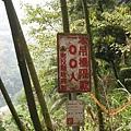 竹山天梯30.jpg